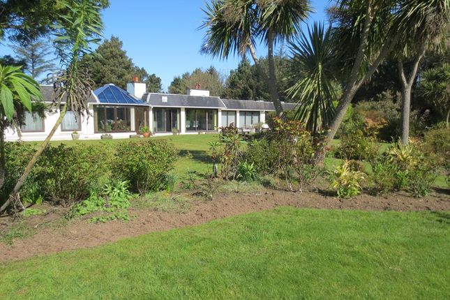Thumbnail Bungalow for sale in Rosemerryn, Maughold, Maughold, Isle Of Man
