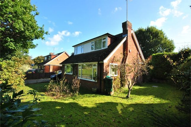 Thumbnail Property for sale in Ellerslie Lane, Bexhill-On-Sea, East Sussex
