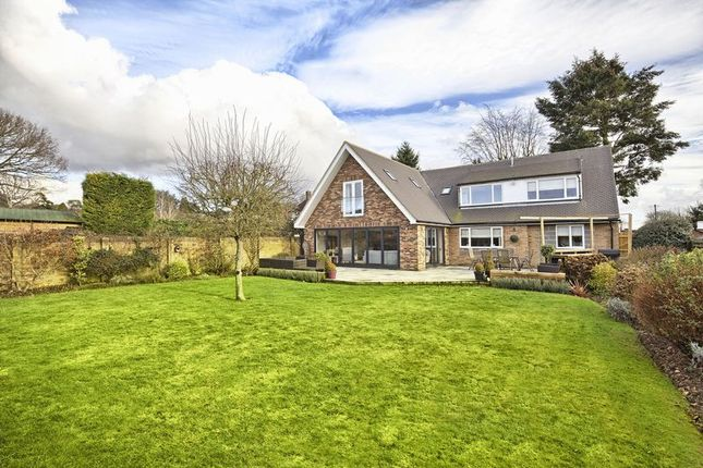 Thumbnail Property for sale in Great Amwell, Nr Ware, Herts