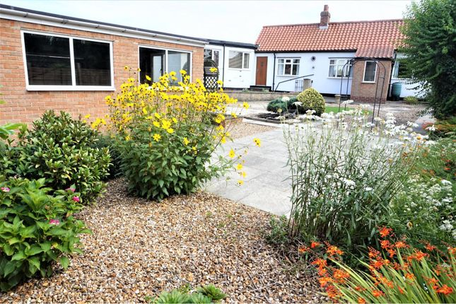 Thumbnail Bungalow for sale in Poplar Avenue, Hutton Rudby
