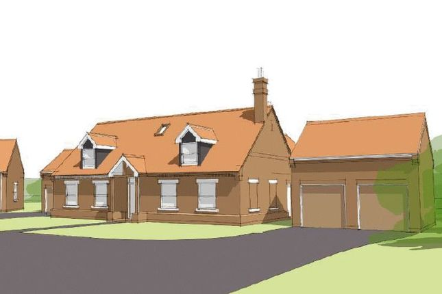 Thumbnail Detached house for sale in Gainsborough Road, Middle Rasen, Market Rasen