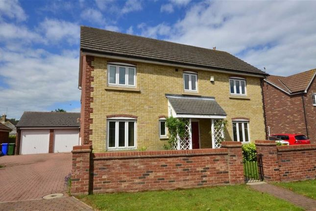 Thumbnail Detached house for sale in Little Orchard, Hook, Goole