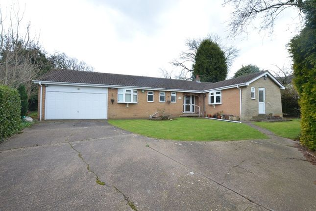 Thumbnail Detached bungalow to rent in Orchard Terrace, Cawthorne, Barnsley