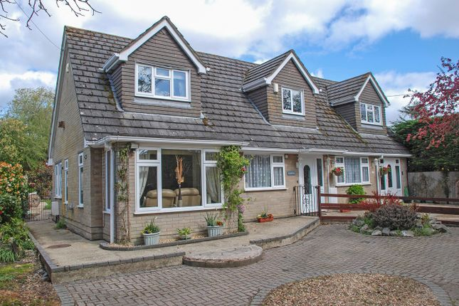 Thumbnail Detached house for sale in School Road, Bransgore, Christchurch