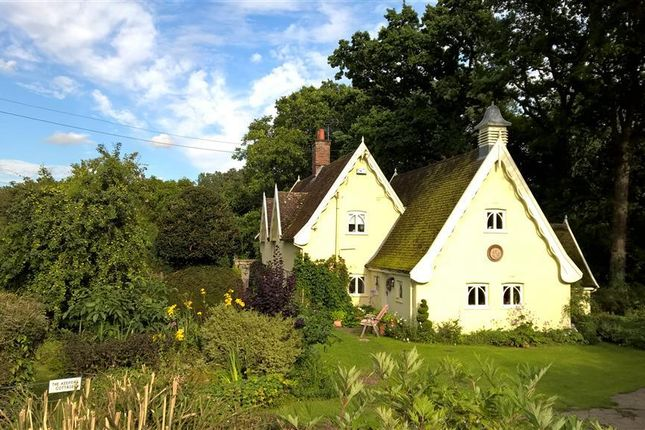Thumbnail Detached house to rent in Mill Lane, Thorpe Abbotts, Diss