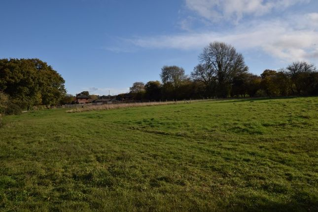 Photo 7 of With 4.58 Acres - Dunsells Lane, Ropley, Hampshire SO24