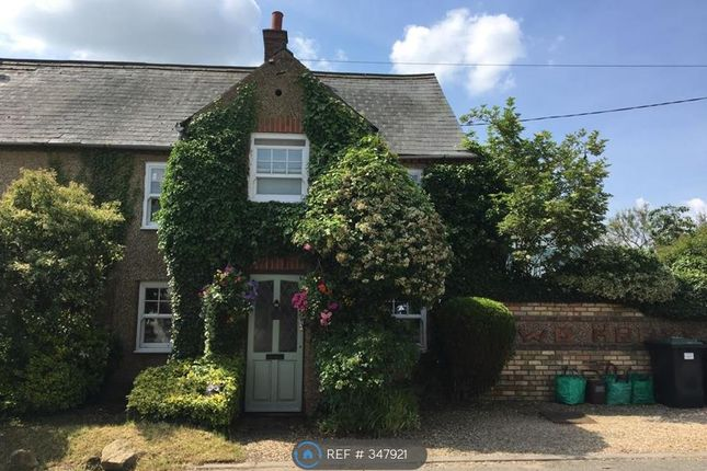 Thumbnail Semi-detached house to rent in Wardhedges Road, Flitton, Bedford