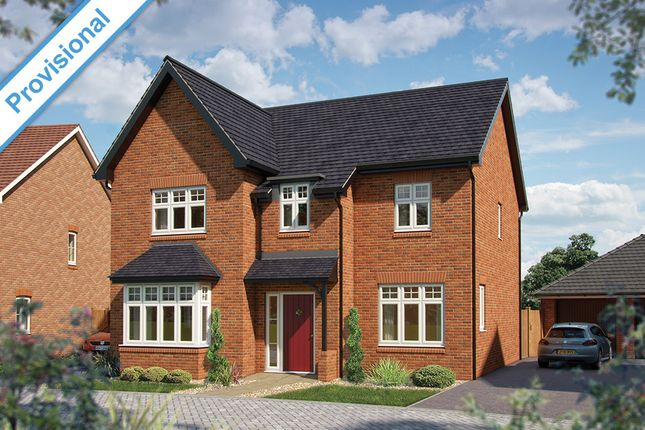 """Thumbnail Detached house for sale in """"The Birch """" at Haygate Road, Wellington, Telford"""