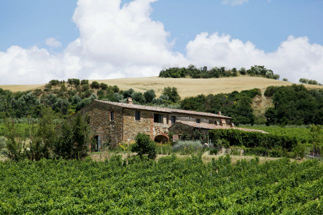 Thumbnail Country house for sale in Montepulciano, Tuscany, Italy
