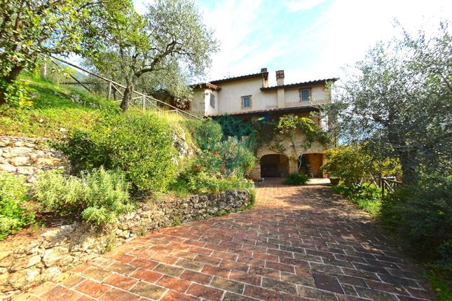 Photo of Montebello, Camaiore, Lucca, Tuscany, Italy