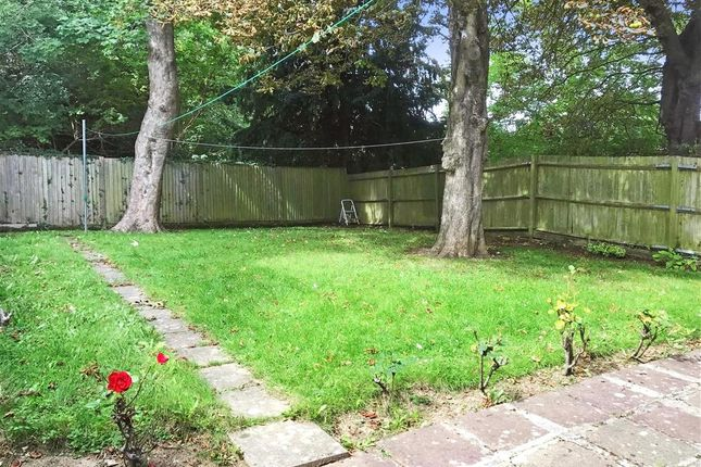 Thumbnail Detached house for sale in Beaumont Road, Purley, Surrey