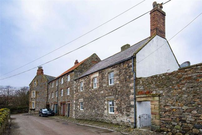 Thumbnail Town house for sale in Sandham Lane, Holy Island, Northumberland