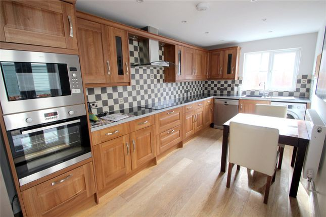 Thumbnail Terraced house to rent in Park Road, Southville, Bristol