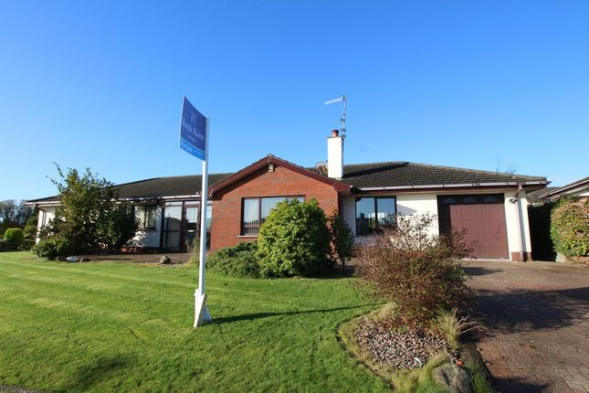 Thumbnail Bungalow for sale in Priory Drive, Carrickfergus