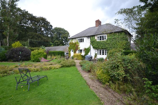 Thumbnail Semi-detached house to rent in Plawsworth, Chester Le Street