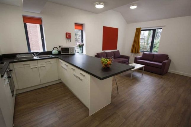 Thumbnail Flat to rent in Ainsley Street, Durham