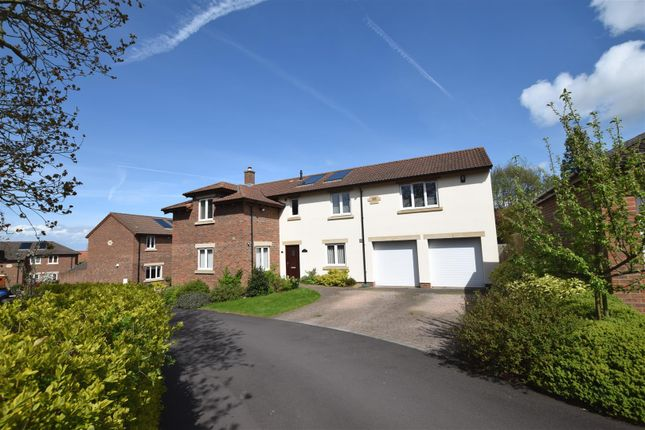 Thumbnail Detached house for sale in Applehayes Rise, Easton-In-Gordano, Bristol