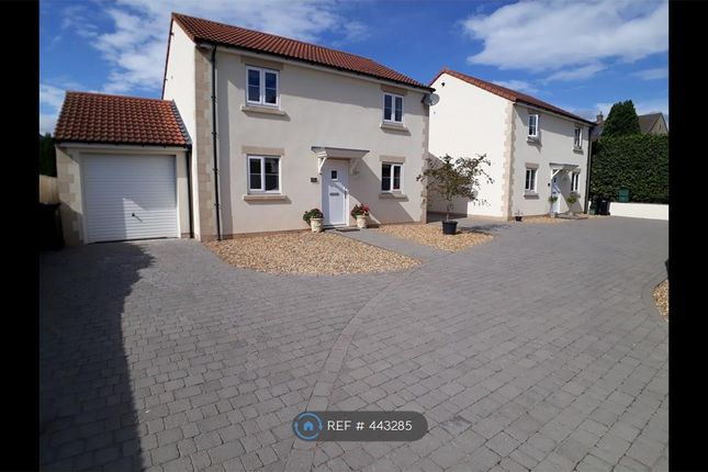 Thumbnail Detached house to rent in Paulton Road, Radstock