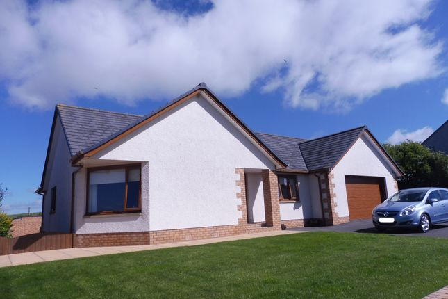 Thumbnail Detached bungalow for sale in Back Of The Hill, Annan