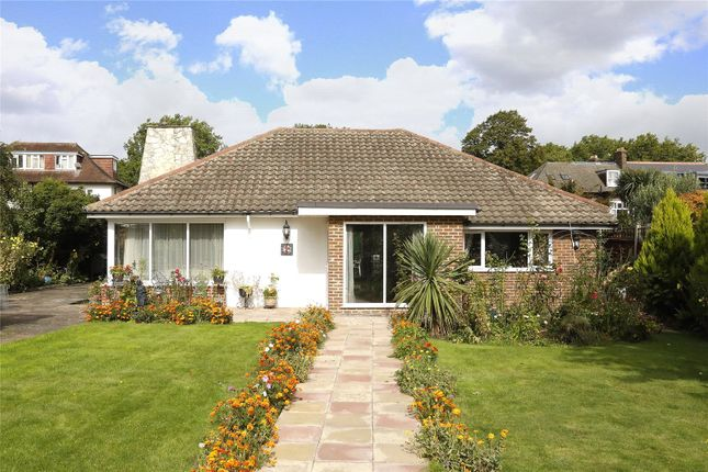 Thumbnail Detached bungalow for sale in Cleaverholme Close, Woodside, Croydon