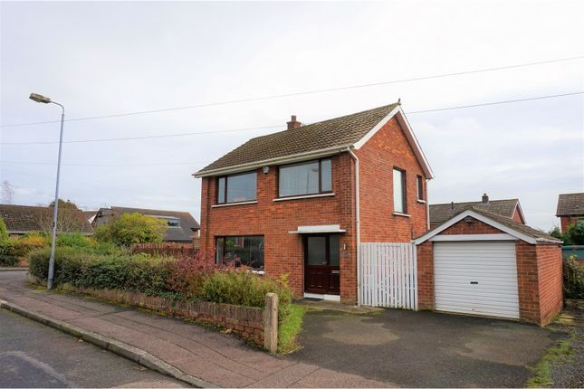 Thumbnail Detached house for sale in Laral Park, Newtownabbey