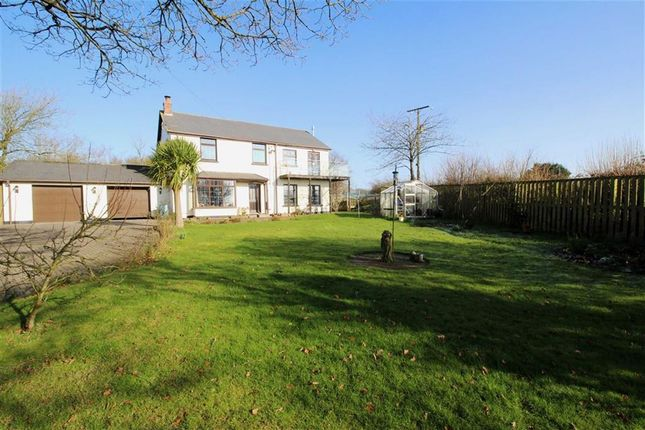 Thumbnail Detached house for sale in Gammaton, Bideford