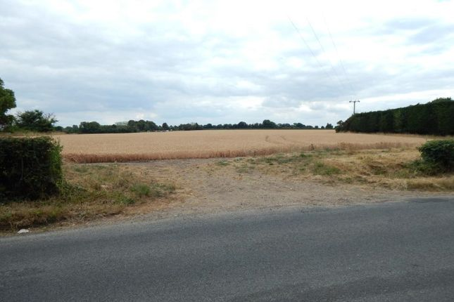 Thumbnail Land for sale in Land South East Of Low Road, Tasburgh, Norfolk