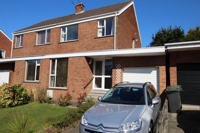 Thumbnail Semi-detached house for sale in Lyndhurst Avenue, Bangor