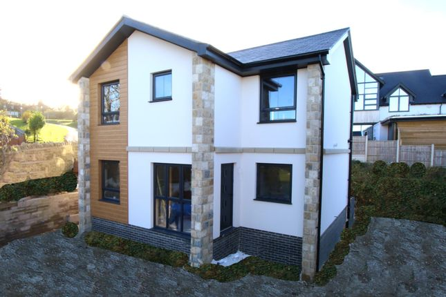 Thumbnail Detached house for sale in Cobblers Lane, Swanage