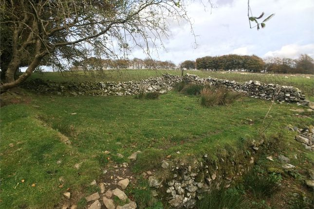 Thumbnail Land for sale in Esgair Llanfair, Llanfair Clydogau, Lampeter