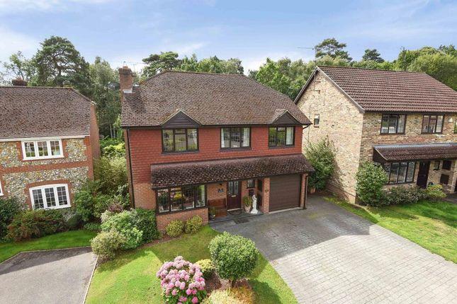 Thumbnail Detached house for sale in Barnett Lane, Lightwater