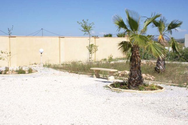 Image11 of Pinoso, Alicante, Spain