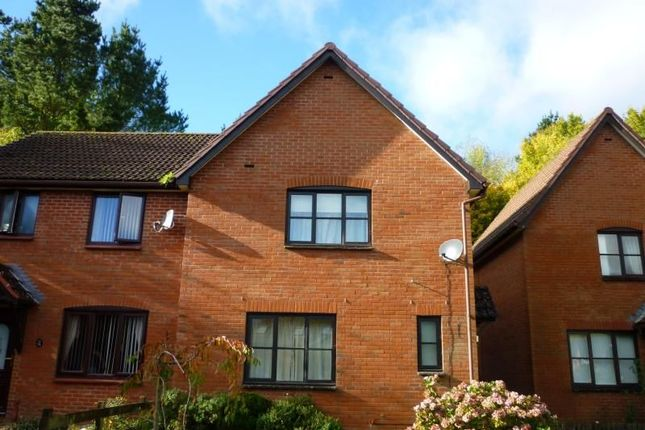 Thumbnail Semi-detached house to rent in Heron Way, Torquay