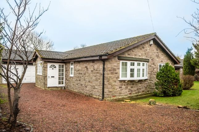 Thumbnail Bungalow for sale in Longframlington, Morpeth
