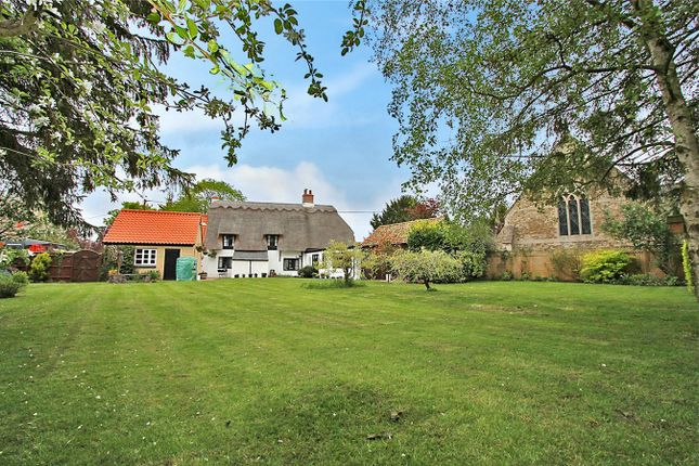 Thumbnail Detached house for sale in Tower Court, Tower Road, Ely