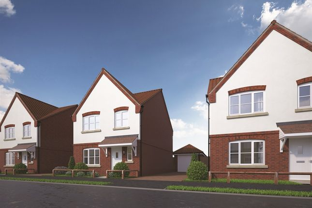 Thumbnail Detached house for sale in The Cashmere At Weavers Meadow, Great Cornard, Sudbury