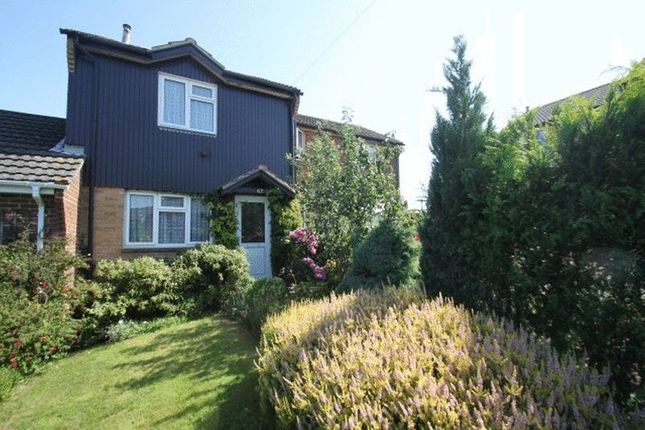Thumbnail Terraced house to rent in Arthur Moody Drive, Newport, Isle Of Wight