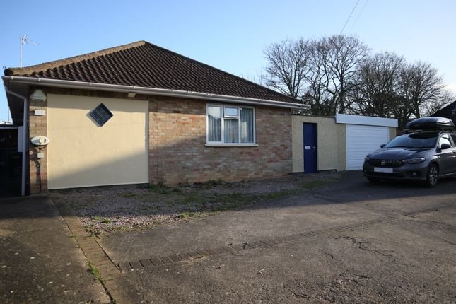 Thumbnail Detached bungalow for sale in Sallows Road, Peterborough
