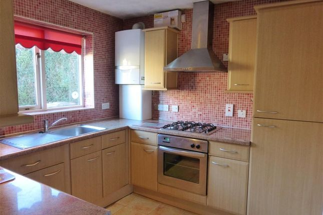 Thumbnail Bungalow to rent in Derby Drive, Dogsthorpe, Peterborough