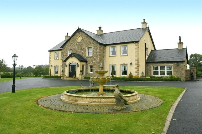 Thumbnail Detached house for sale in Carryduff Road, Lisburn, County Antrim