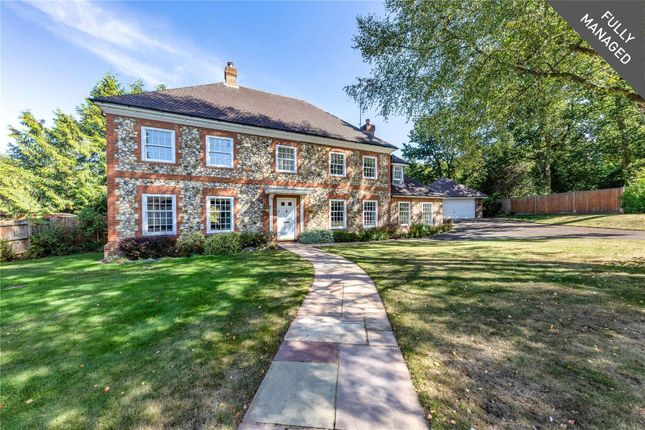 Thumbnail Detached house to rent in Talisman Close, Crowthorne, Berkshire