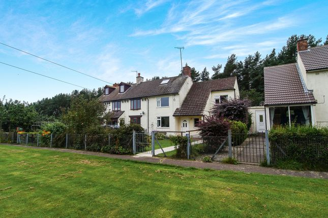 Thumbnail Semi-detached house for sale in Otterburn, Newcastle Upon Tyne