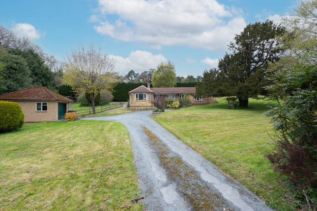 4 bed detached bungalow for sale in Pirbright Road, Normandy, Guildford GU3