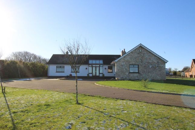 Thumbnail Bungalow for sale in Cairn Road, Carrickfergus