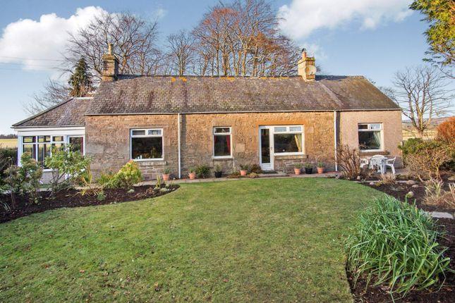 Thumbnail Cottage for sale in Burnside, Forfar