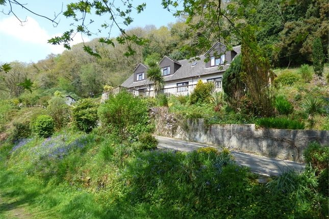 Thumbnail Detached house for sale in Two Waters Foot, Liskeard