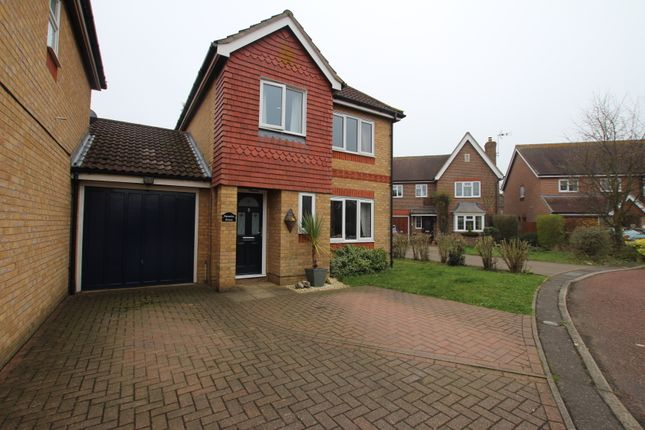 Thumbnail Detached house for sale in Hadrian Close, Colchester