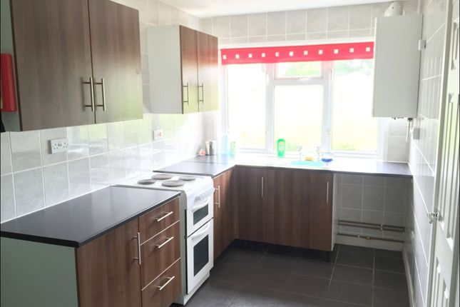 Thumbnail Terraced house to rent in Maes Y Deri, Lampeter