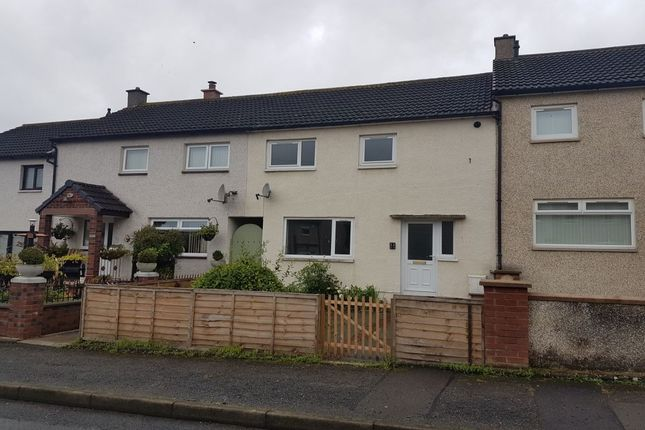 Thumbnail Terraced house to rent in Surrone Road, Gretna