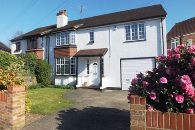 Thumbnail Semi-detached house to rent in Limes Road, Egham